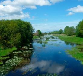 A vida dun río esquecido